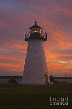 Amazing Jules - Pastel Sunset at Ned
