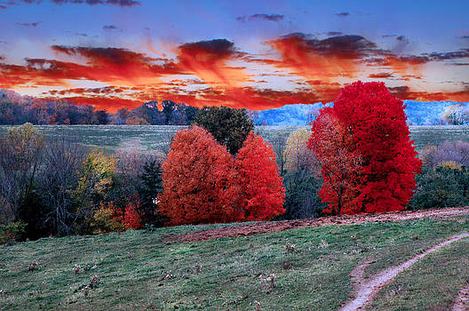 Randall Branham - Pasture Autumn Clouds like Trees