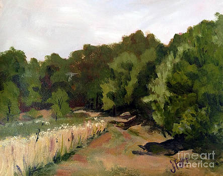 Path in the Field by Janet Felts