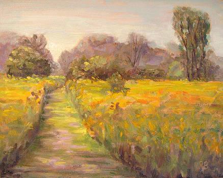 Path in the Prairie by Robie Benve
