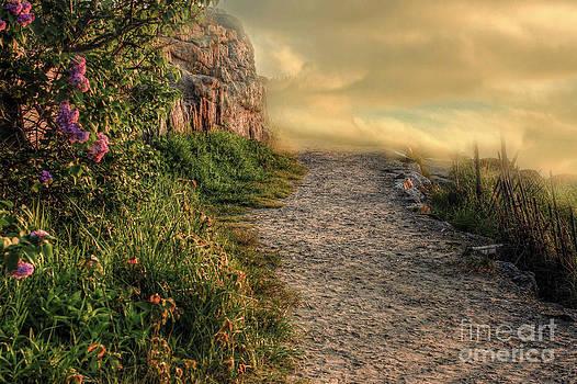Brenda Giasson - Path of Enchantment