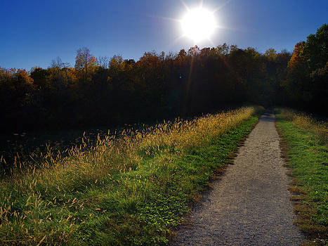 Path of Light by Jamieson Brown