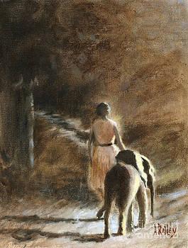 Path to Freedom by Ann Radley