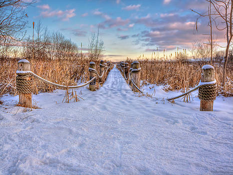 Pathway to Crooked Lake by Jenny Ellen Photography
