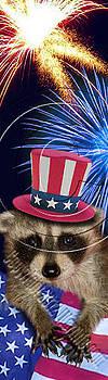 Jeanette K - Patriotic Raccoon # 513