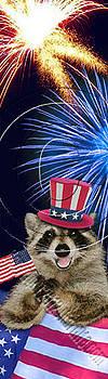 Jeanette K - Patriotic Raccoon # 518
