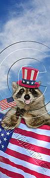 Jeanette K - Patriotic Raccoon # 528
