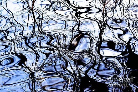 BERNARD JAUBERT - Patterns reflected on a water surface