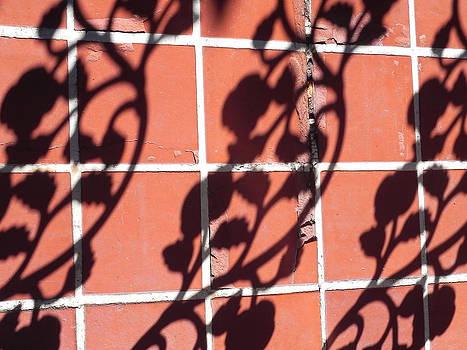 Pavilion Wrought Iron  by Cheryl Hoyle