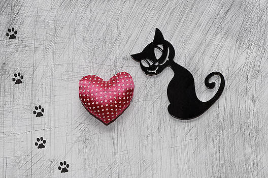 Paws Of Love by Dockside Colors