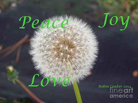 Peace Joy and Love by Robin Coaker
