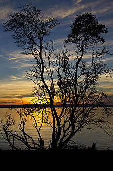 Peace on Chambers Bay by Ronald Hanson