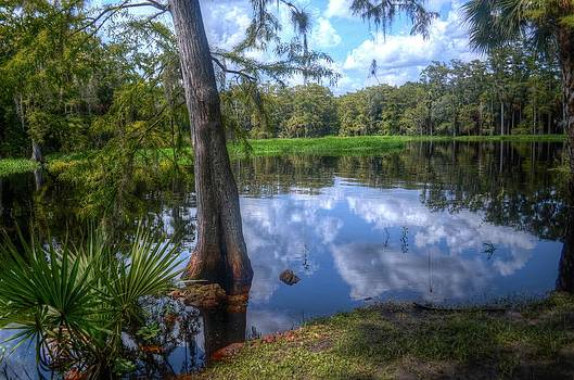 Peaceful Florida by Timothy Lowry