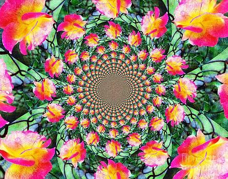 Peaceful Kaleidoscope by Judy Palkimas