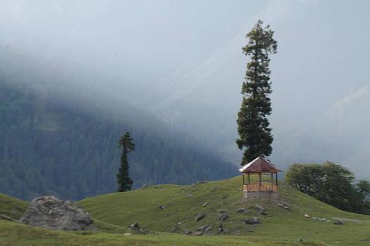 Peaceful by Saman Khan