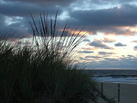 Peaceful Sunrise by Terrilee Walton-Smith