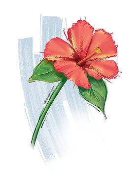 Peach Hibiscus by Pat Thompson