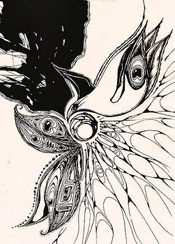 Andrea Carroll - Peacock