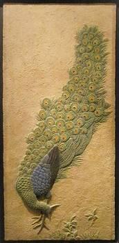 Peacock. by Jose Manuel Solares