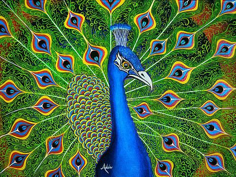 Peacock Splendor by Adele Moscaritolo