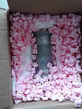 Peanuts in a box by Leonard Lukomski
