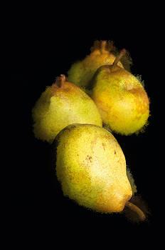 Regina  Williams  - Pear Still Life Painterly