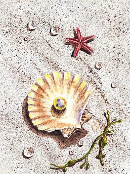 Irina Sztukowski - Pearl In The Seashell Sea Star And The Water Drops