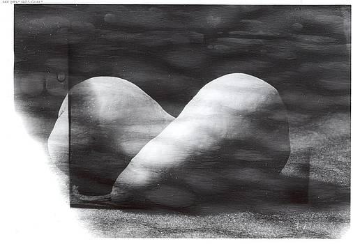 Karin Thue - Pears 2