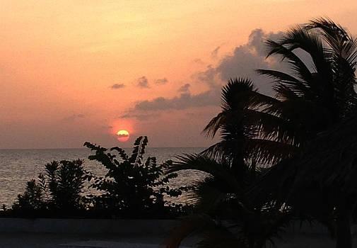 Peeping Sunset by Ann Iuen
