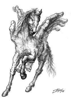 Pegasus by Boyan Donev
