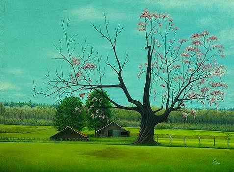 Peisage by Qendrim Azemi