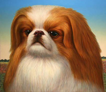 James W Johnson - Pekingese
