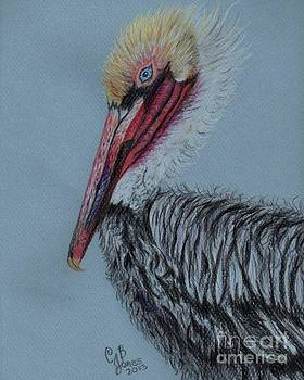 Pelican 3 by Chris Bajon Jones