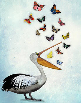 Pelican and Butterflies by Kelly McLaughlan