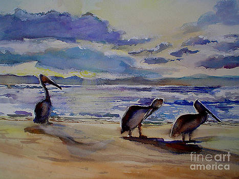 Pelican Dawn watch by Shirley Roma Charlton