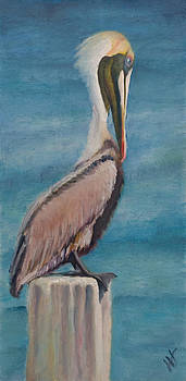 Pelican II by Wendie Thompson
