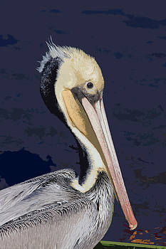 Pelican in a Green Boat by Bob and Jan Shriner