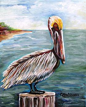 Pelican Pointe by Carol Allen Anfinsen