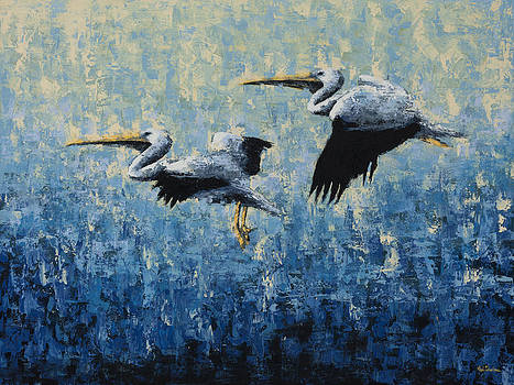 Pelicans by Ned Shuchter