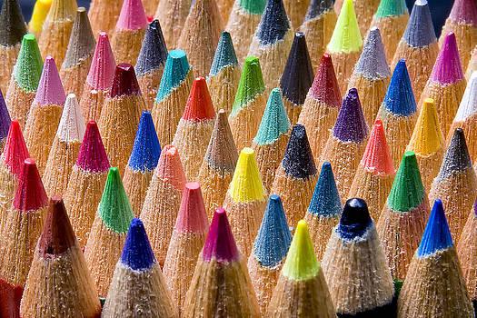 Jeff Burton - Pencil Forest
