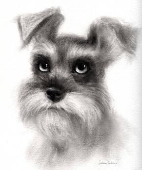 Svetlana Novikova - Pensive Schnauzer Dog painting
