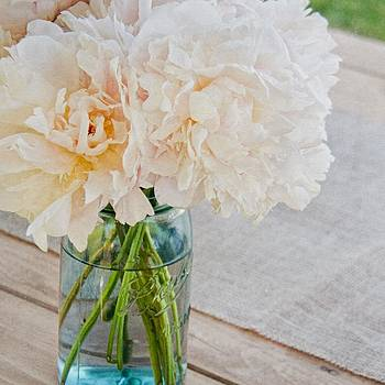 Peony II by Mary Hershberger