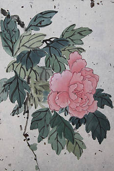 Peony  by Taesook Jung
