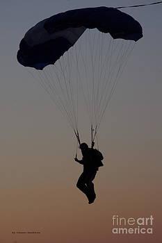 Tannis  Baldwin - Perfect Sunset Landing