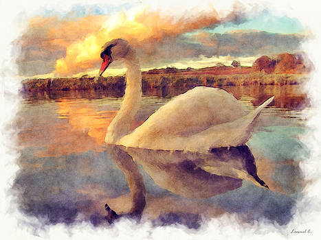 Perfect Swan by Lemuel Conde