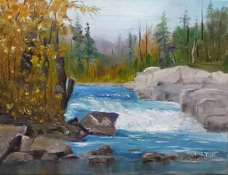 Peterborough Falls by Larry Hamilton