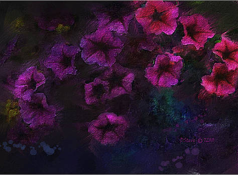 Petunia by Don Steve