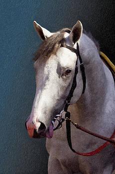 Angela A Stanton - Phantom Lover - Portrait of a Race Horse