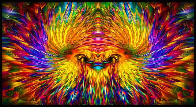 Phoenix Rising  by Jalai Lama