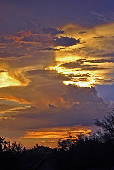 Jeff Brunton - Phx July 2014 Sunsets 7
